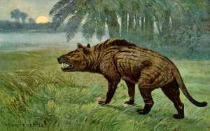 Hyaenodon_Heinrich_Harder